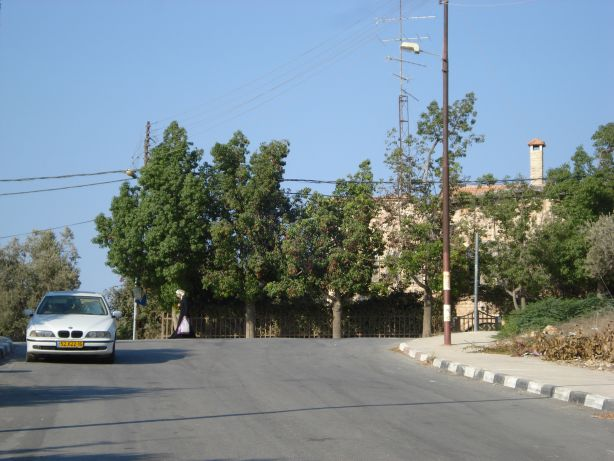 Al Tierah