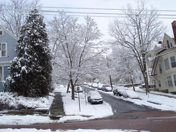 Cold Snow !!